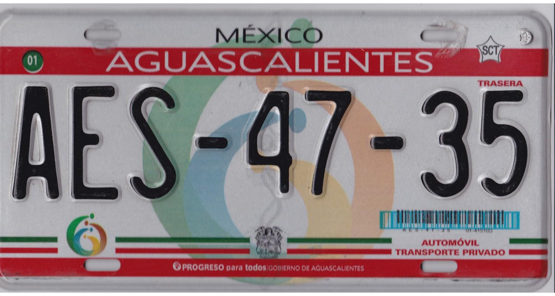Mexico 2010's AGUASCALIENTES