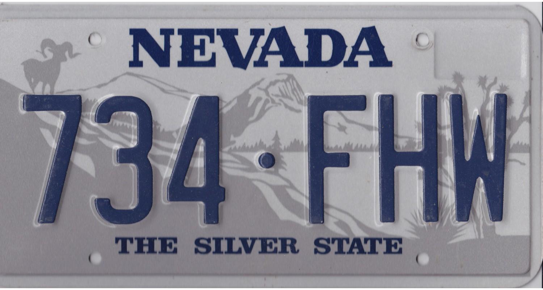 Nevada 1990's