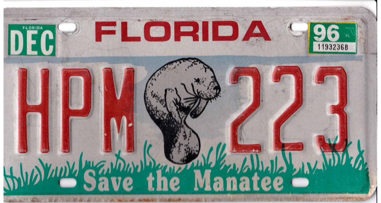 Florida 1996-MANATEE