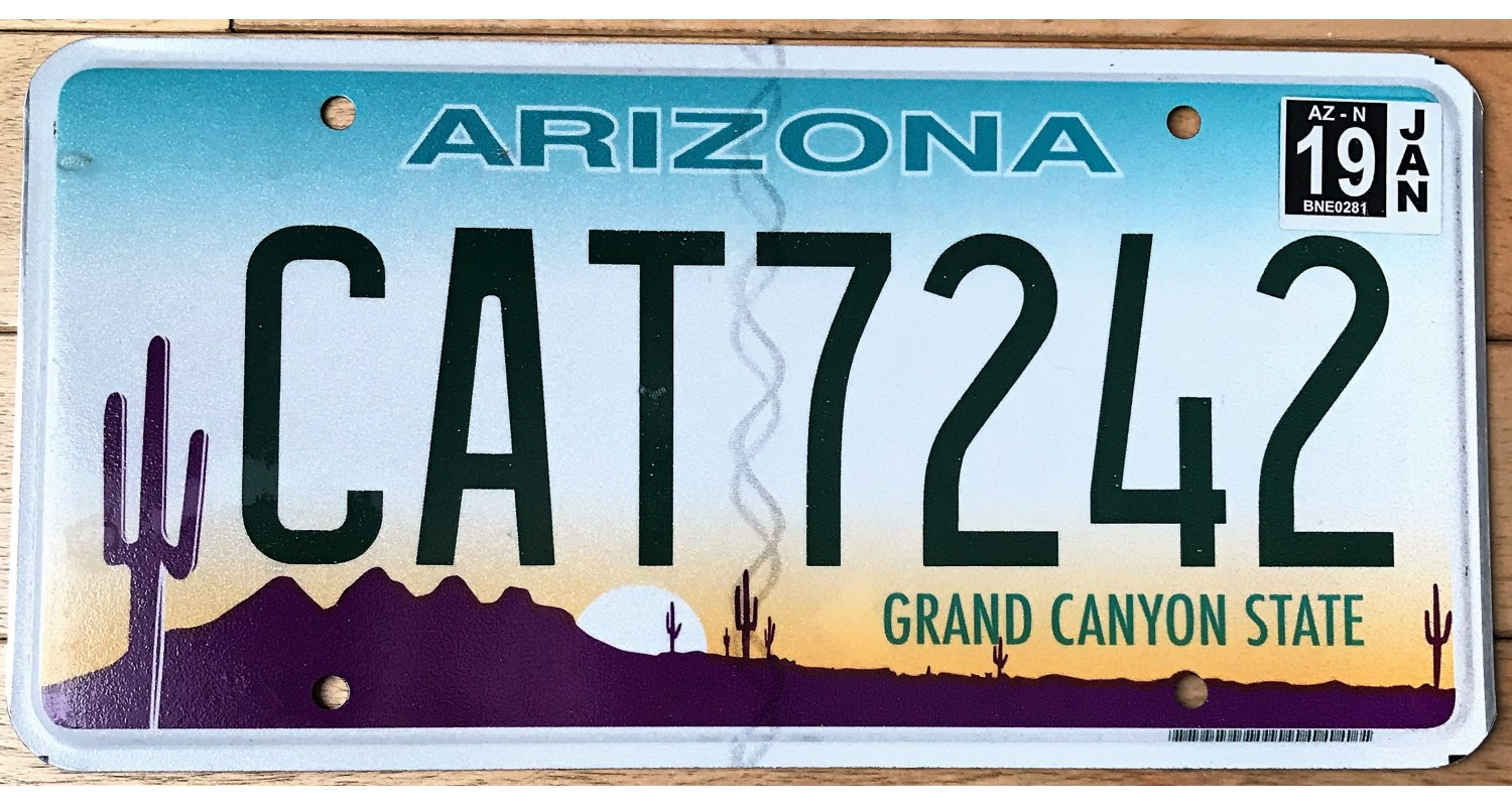 Arizona 2015's cat