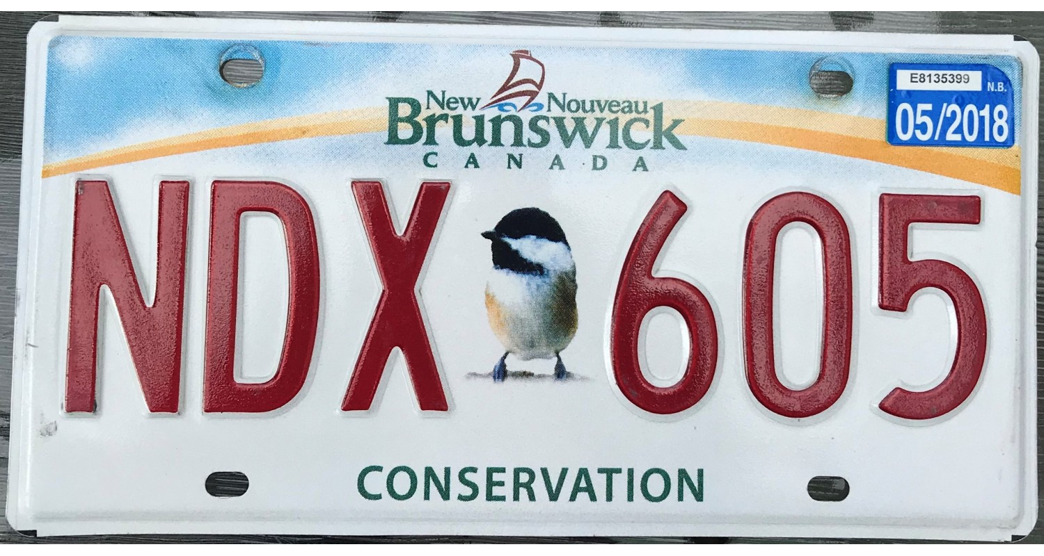 New Brunswick conservation bird 2018