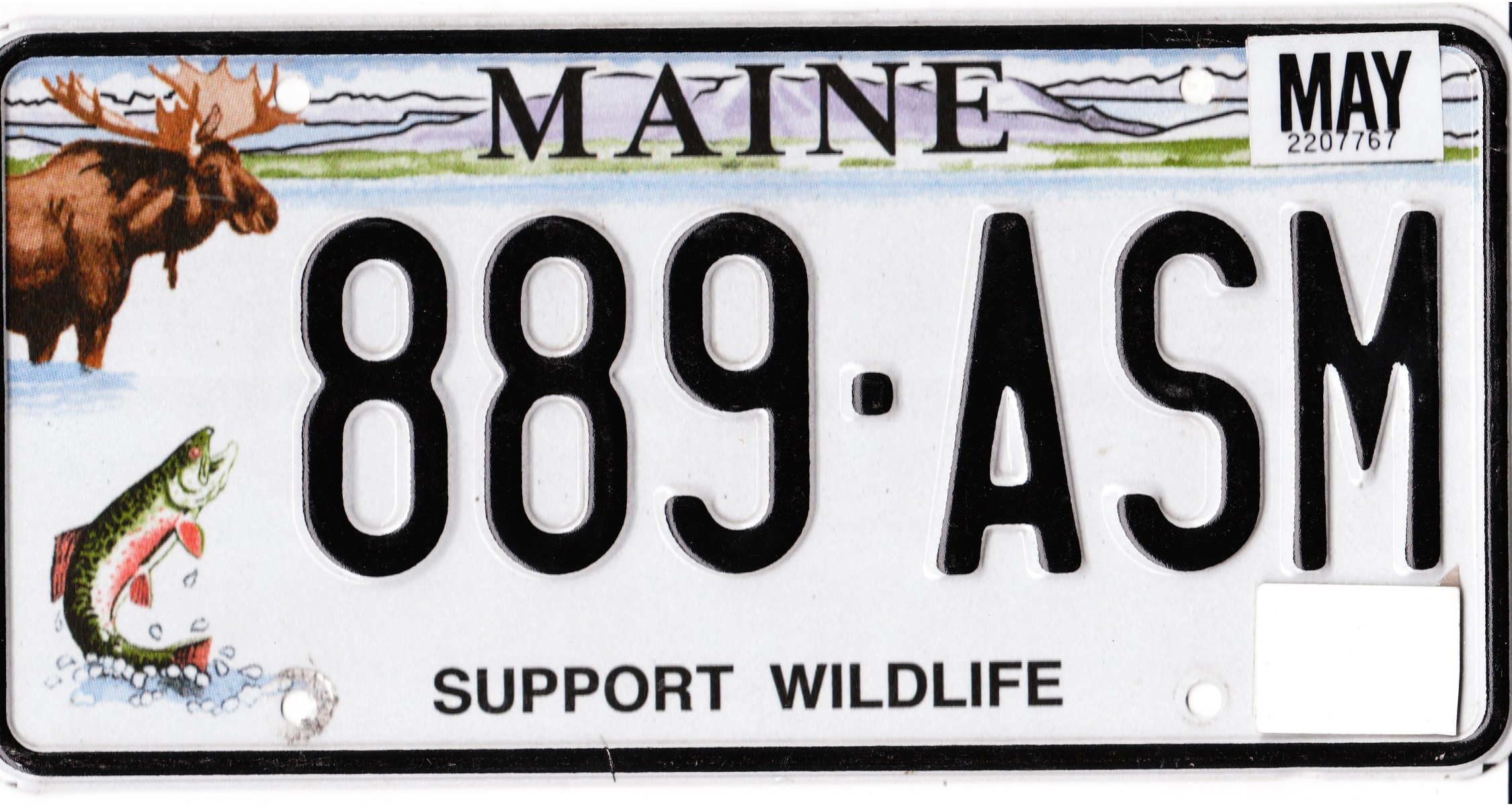 shop world license plates