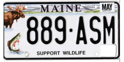 Maine 2010's-WILDLIFE-MOOSE & TROUT