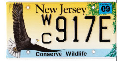 New Jersey 2002-WILDLIFE-EAGLE